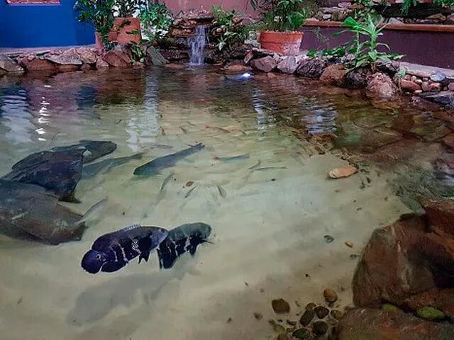 aqua-rio-de-bonito-10-1