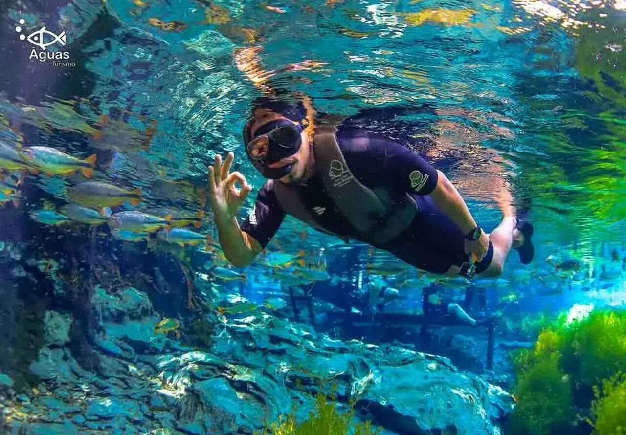 aquario-natural-3
