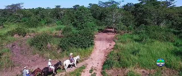 cavalgada-no-parque-ecola-gico-do-rio-formoso-8-1