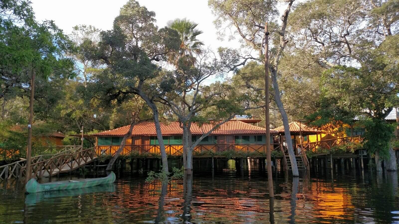 Jungle Lodge (1)