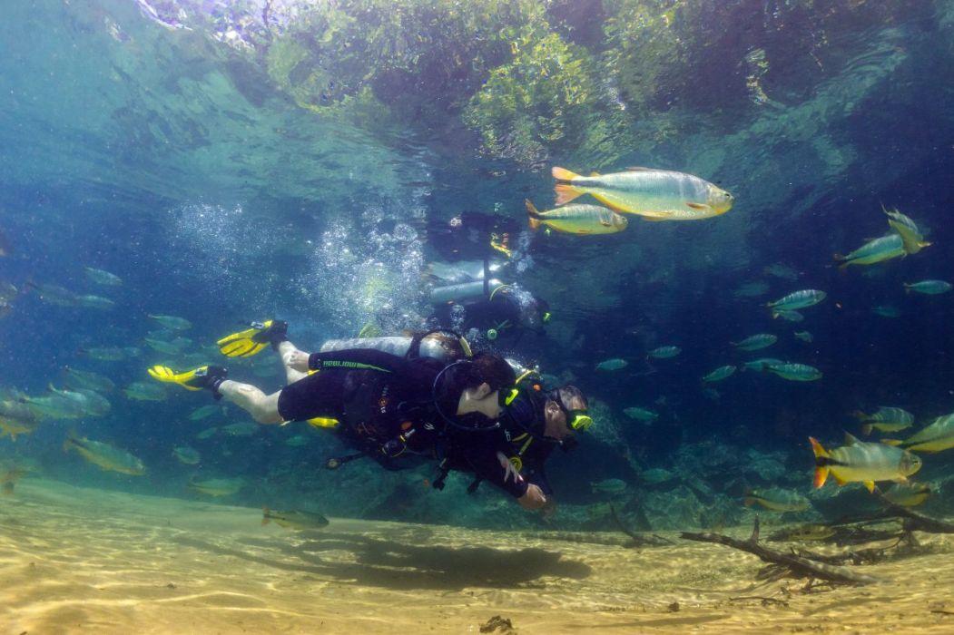 peixes-encantam-durante-mergulho-daniel-de-granville_182